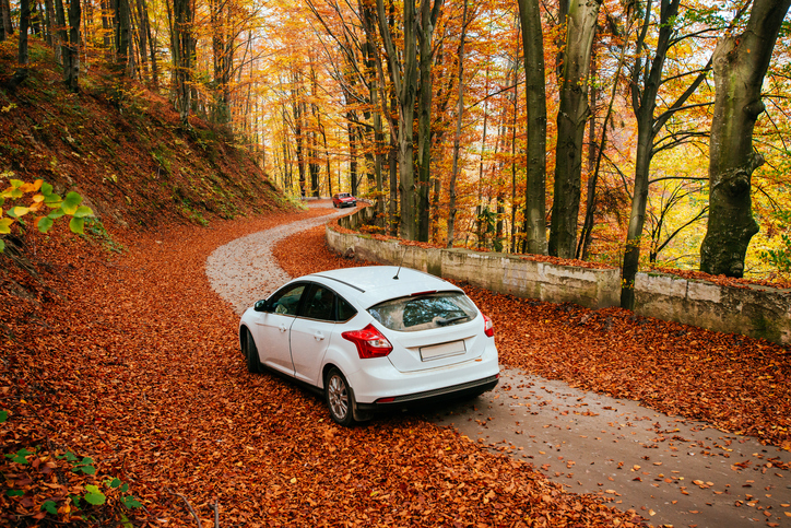 Autumn driving risks
